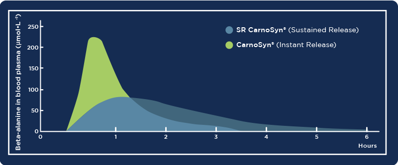 Graph showing how long CarnoSyn stays in the body
